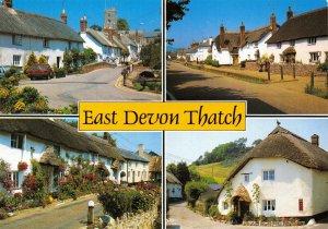 Postcard East Devon Thatch Cottages, East Budleigh, Otterton, Branscombe DE8