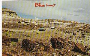 Arizona Petrified Forest The Blue Forest 1980