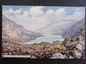 Ireland Co.Kerry KILLARNEY - THE GAP OF DUNLOE, UB Tuck's Panoramic Card