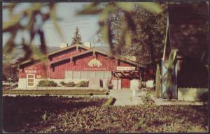 Wine Tasting Room,Italian Swiss Colony,Asti,CA Postcard BIN