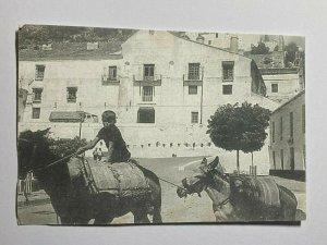 UNUSED RETRO POSTCARD - BOY & DONKEYS FRIGILIANA 60 YEARS SPAIN (KK2153)