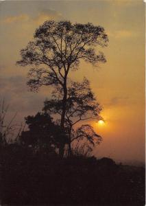 B52972 Togo soleil couchant pres de Badou