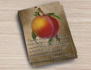 Postcard Set, Proverbs 3:5,6 Trust in the Lord with all your heart.. Calming
