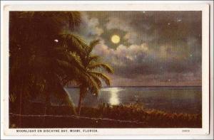 Biscayne Bay, Miami Fl