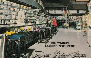 St Thomas Tropicana Perfume Factory Main Street World's Largest Perfumerie s3357