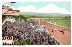 Mexico Tiajuana , Horse Race track