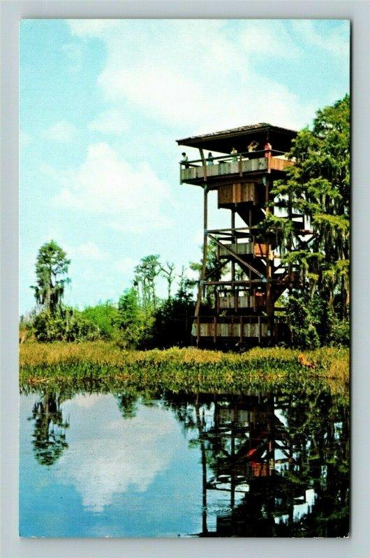 Okefenokee GA- Georgia Okefenokee Swamp Wildlife Refuge Vintage Chrome Postcard