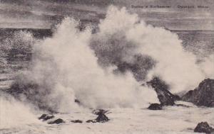 Maine Ogunquit During A Northeaster Albertype
