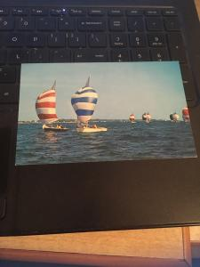 Vintage Postcard: Sailboats on the ocean, unspecified location