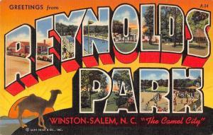 Winston-Salem North Carolina Greetings From Reynolds Park antique pc Y15109
