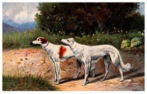 Dog ,    Blood Hound