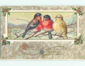 Pre-Linen christmas THREE BEAUTIFUL LARGE BIRDS SITTING ON BRANCH J1751