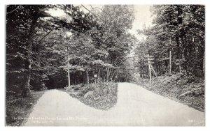 1916 Forks on Road to Pocono Inn & Mt. Pocono, Swiftwater, PA Postcard *5N(3)33