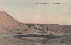 ADAMANA, Arizona, 1920-30s; In the Petrified Forest # 6