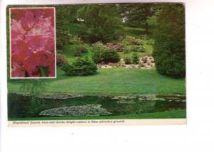 Blossom Insert, Trees and Shrubs, Kentville Research Station Nova Scotia, Wil...