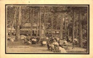Lake Grove Auburn ME 1914