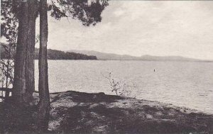 Maine Rangeley Lakes Region The Lake Mooselookmeguntic Albertype