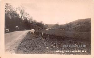 Road Scene Lansing Kill Gorge NY Unused