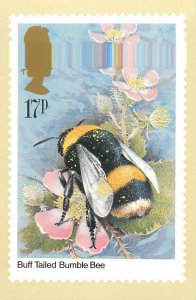 British stamp on Postcard Insects Buff Tailed Bumble Bee by Gordon Beningfield