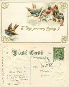 Cute Birds, 1909 Wish You a Merry Christmas, Embossed Divided Back
