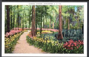 Cypress Gardens,Charleston,SC