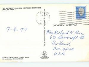 Pre-1980 TOWN VIEW SCENE St. Saint Anthony Harbour Newfoundland NL p9552