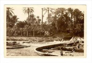 RP  GABES (Tunusie) - Le Petit Djara, 1910s