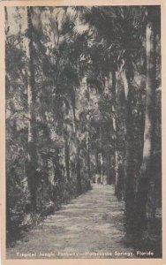 Florida Homosassa Springs Tropical Jungle Pathway