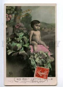 234064 NUDE Baby in cabbage Vintage PHOTO tinted French PC