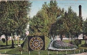 Michigan Detroit Floral Flag Water Works Park 1908