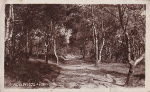 Adelwood Leeds Forest Yorkshire Old Real Photo Postcard