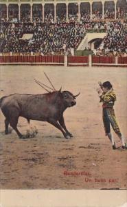 Bull Fight Banderillas 1913