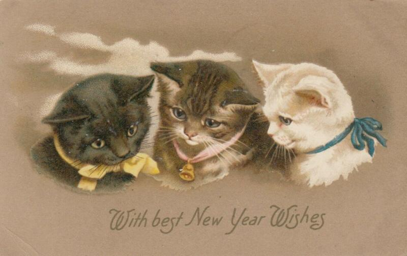 NEW YEAR, PU-1908; Portrait of three curious cats