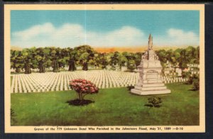Graves of the Unknown Dead,Johnston,PA Flood of May 31,1889