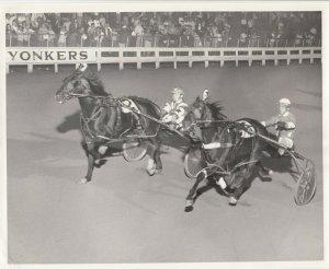 YONKERS Raceway Harness Horse Race , ANXIOUS ROBBIE wins, 1984