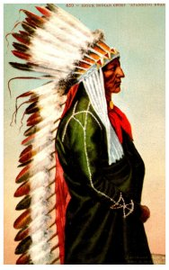 American Indian  Sioux Indian Chief Standing Bear   ,  Reproduction