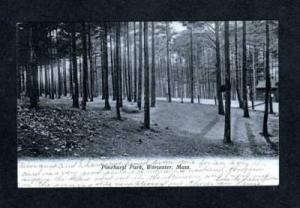 MA 1908 View Pinehurst Park WORCESTER MASS UDB Postcard Massachusetts