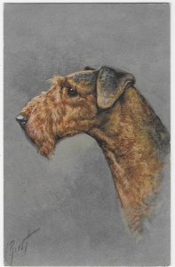 Airdale Terrier #100 Printed in Switzerland Signed