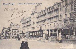 Belgium Blankenberge L'Hotel des Familles et la Digue 1905