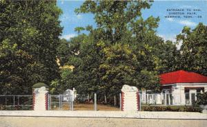 Memphis Tennessee~Overton Park-Zoo Entrance~Lion Statues (from Italy)~1940s PC