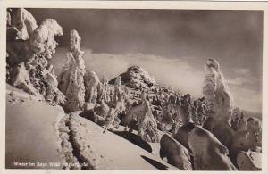 RP; Winter im Bayr, Wald, Arbergipfel, Germany, 10-20s