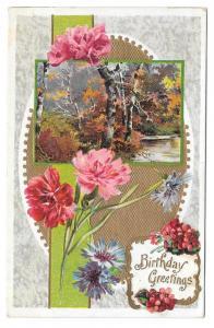 Birthday Greetings Carnations Woodland Scene Postcard