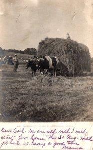 Iowa Greetings From Homestead Hay Making Scene 1906