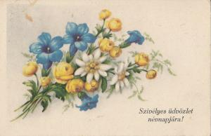 Hungarian greetings postcard floral fantasy postcard