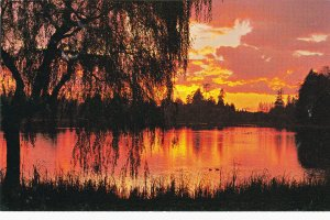 CAMPBELL RIVER , B.C., Canada, 1950-60s ; Willow Pond at sunset