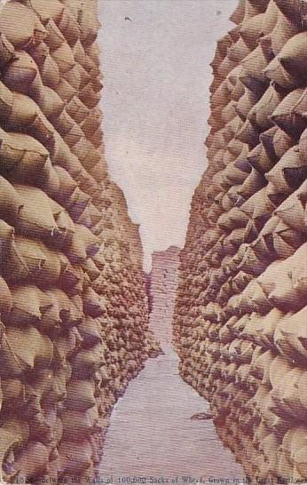 Between The Walls Of 100,000 Stacks Of Wheat Grown In The Great Northwest