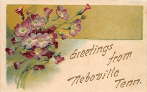 G44/ Neboville Tennessee Postcard 1908 Greetings from Neboville