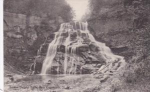 New York Cazenovia Lower Delphi Falls Albertype