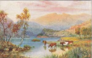 Tucks Rydal Water With Cows PIcturesque English Lakes Series 7287