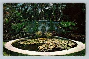 Miami FL- Florida, Fairchild Tropical Garden, Chrome Postcard